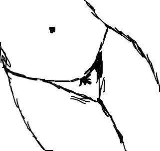 Pidão