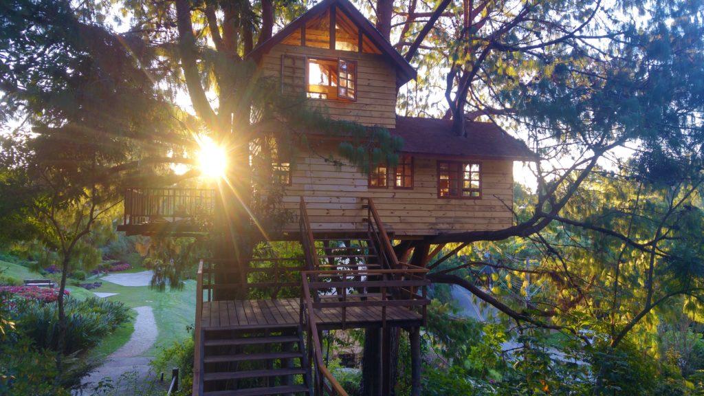 Parque Amantikir - Casa da Árvore