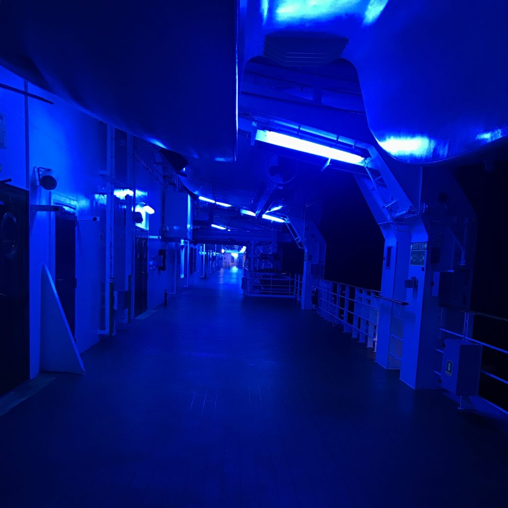 Deck Externo MSC Magnífica Cruzeiro Organizado
