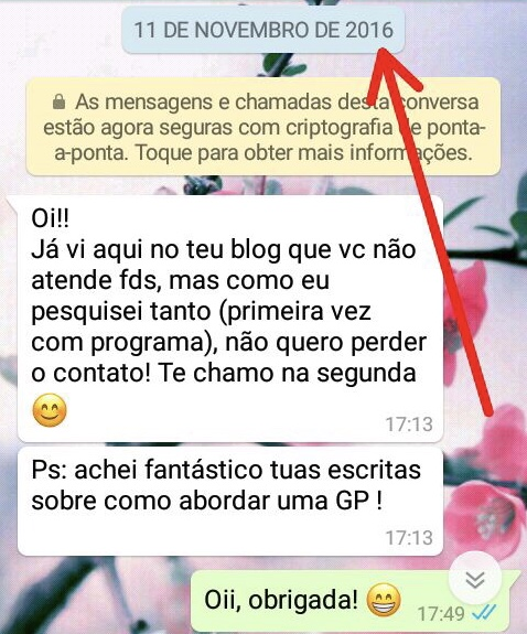 WhatsApp Sara Müller e Divertido