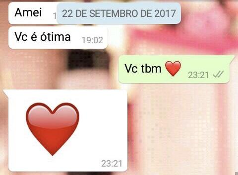 WhatsApp Sara Müller e Segundo Argentino