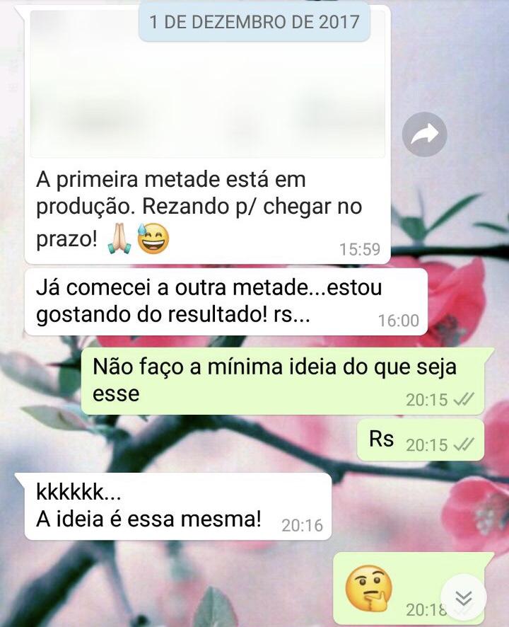 WhatsApp Sara Müller e Fofo
