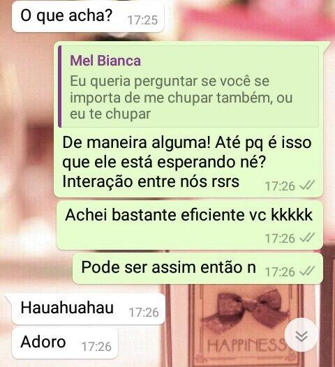 WhatsApp Sara Müller, Namorador e Mel Bianca