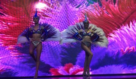 Teatro MSC Magnífica Cruzeiro Organizado